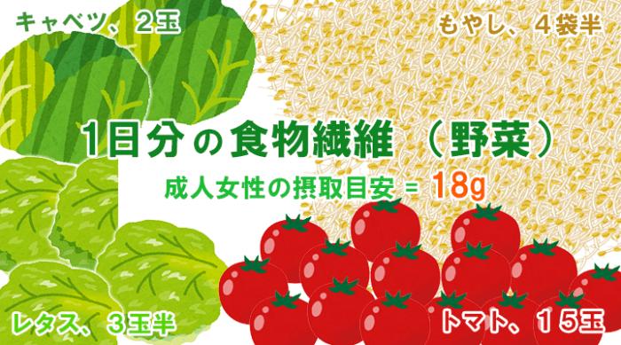 1日分の食物繊維(野菜)