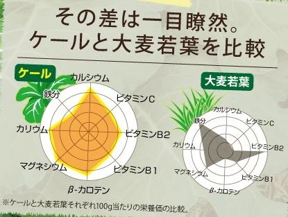ケールと大麦若葉の栄養成分比較