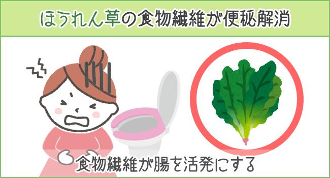ほうれん草の食物繊維で便秘を解消