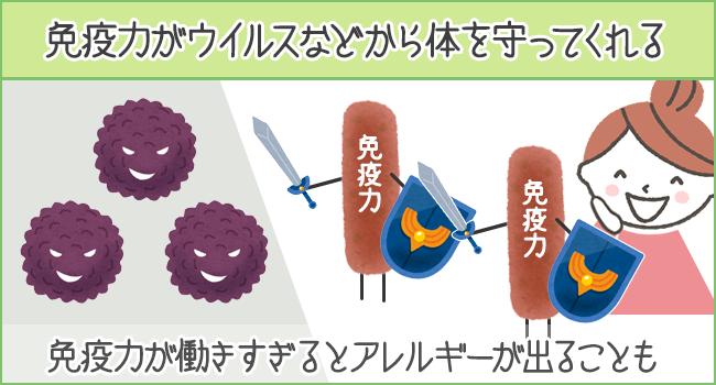 免疫力がウイルスからカラダをまもってくれる