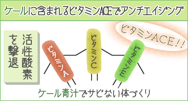 ケールに含まれるビタミンACEにはアンチエイジング効果あり!