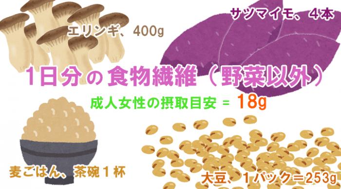 1日分の食物繊維(野菜以外)