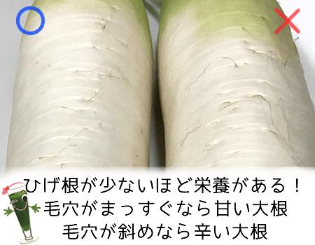 大根のひげ根