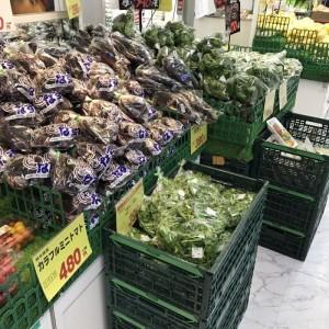スーパーの野菜売り場の写真 part3