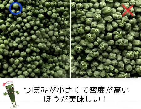 ブロッコリーの蕾の大きさや密度