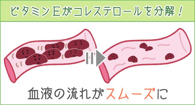 ビタミンEがコレステロールを分解