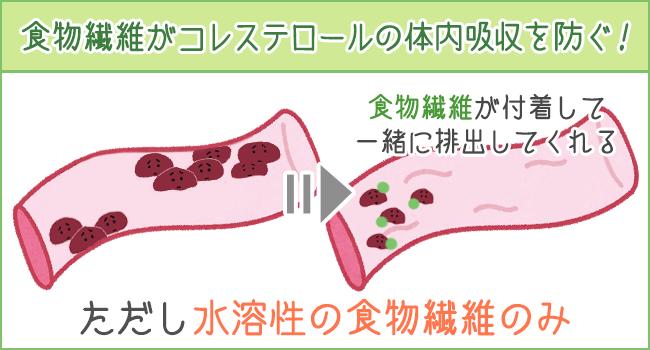 食物繊維がコレステロールの体内吸収を防ぐ