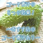 ゴーヤ青汁には5つの効果がある!おすすめの青汁あり