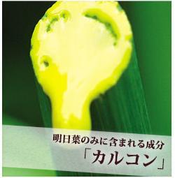 明日葉の独自成分のカルコンの画像
