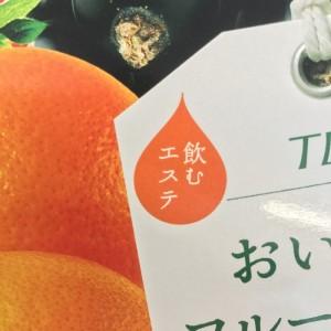 おいしいフルーツ青汁ダイエットのパッケージに記載の飲むエステの文字