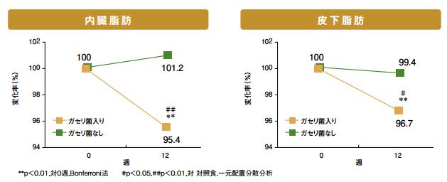 ガセリ菌の中性脂肪の減少を表したグラフ