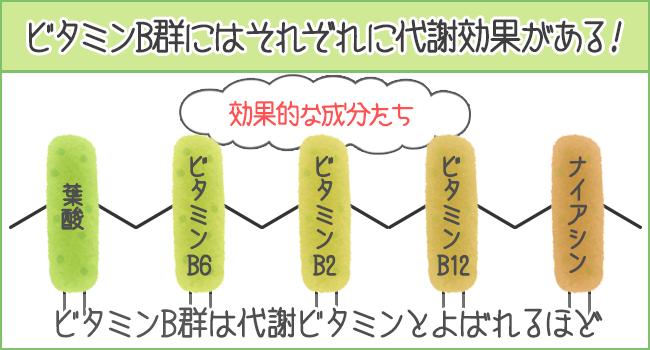ビタミンB群にはそれぞれ代謝を上げる効果がある