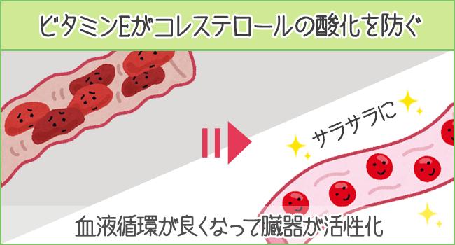 ビタミンEがコレステロールの酸化を防ぐ