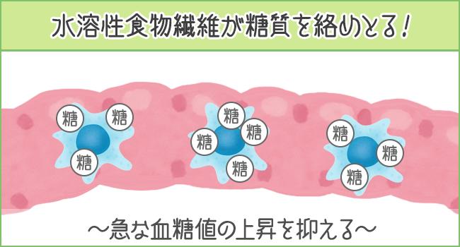 水溶性食物繊維が糖質を絡め取る