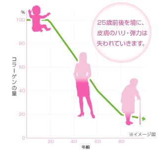 Ⅲ型コラーゲンの減少を表したグラフ