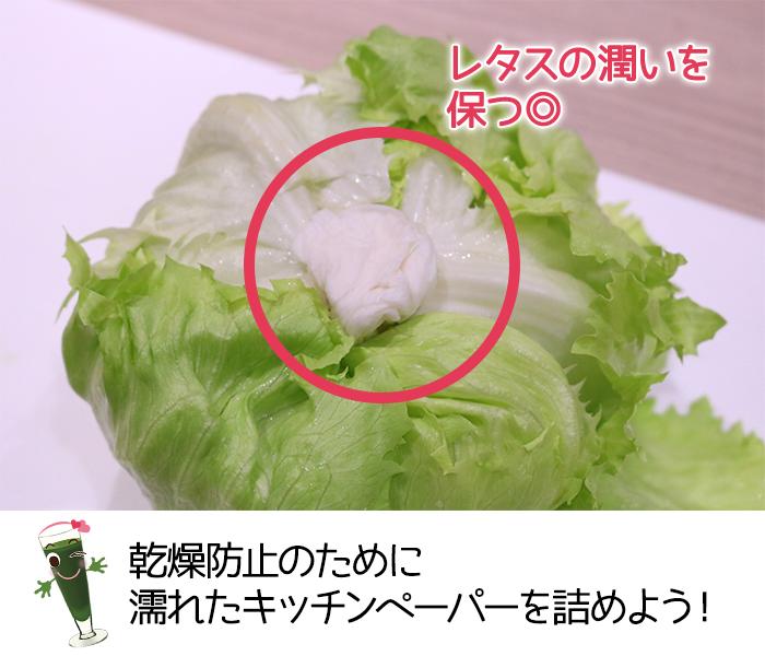 レタスの乾燥予防のために濡れたキッチンペーパーを詰め込む