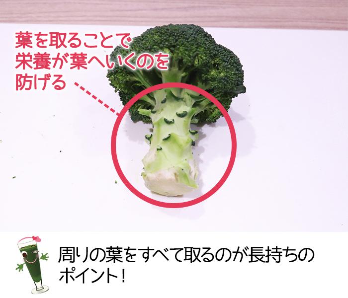 ブロッコリーを保存するときは周りの葉を取るのがポイント