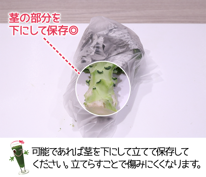 ブロッコリーはできるだけ茎を下にして保存する方が良い