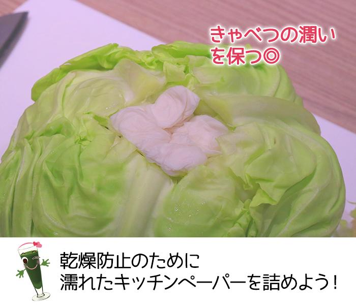 キャベツの芯に濡れたキッチンペーパーを詰めることで乾燥を防ぐ