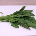 ほうれん草の保存方法の紹介