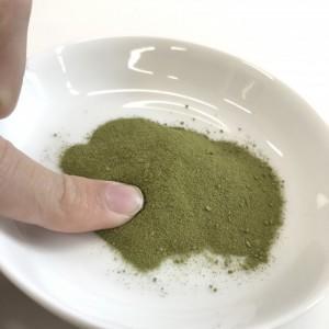 ユーグレナの緑汁の粉末を指につけているところ