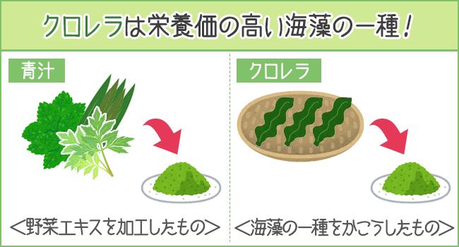 クロレラは栄養価の高い海藻の一種を加工したもの