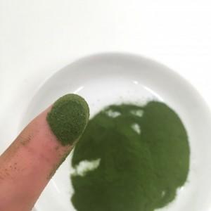 よくばり青汁の粉末を指につけた様子