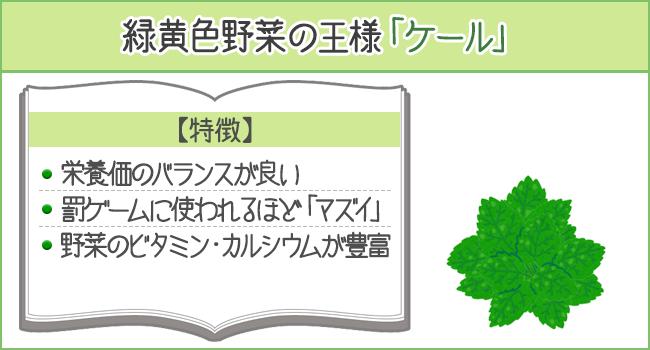 緑黄色野菜の王様「ケール」の特徴
