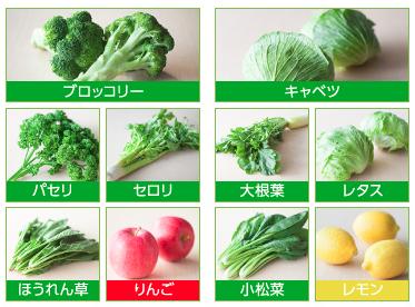 緑でサラナに使われている10種の素材