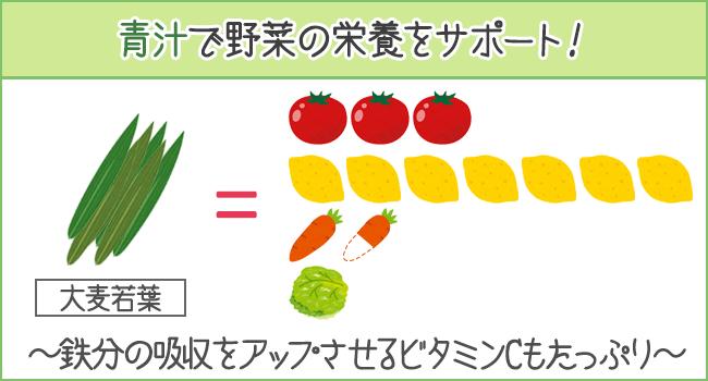 青汁で野菜の栄養をサポート