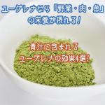青汁に含まれるユーグレナは「野菜・肉・魚」の栄養が摂れる!4つの効果を紹介。