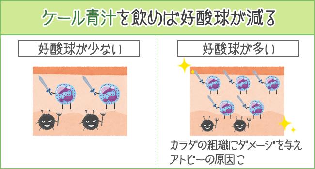 ケール青汁を飲めば、アトピーの原因になる好酸球を減らせる