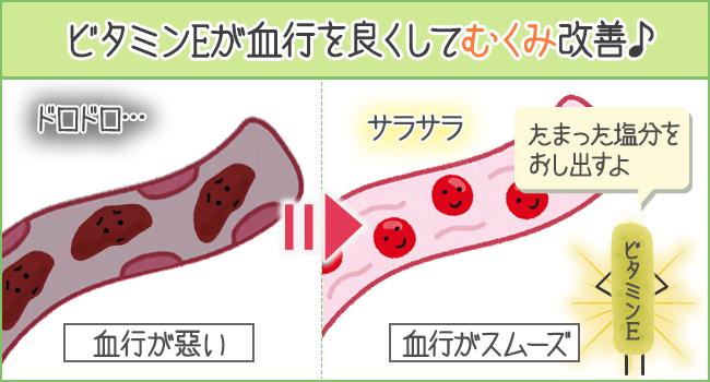 ビタミンEが血行を良くしてむくみを改善