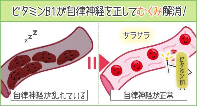 ビタミンB1が自律神経を正してむくみ解消