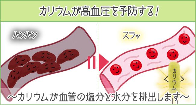 カリウムが高血圧を予防する