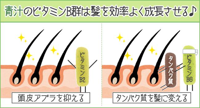 青汁のビタミンB群は髪を効率よく成長させる