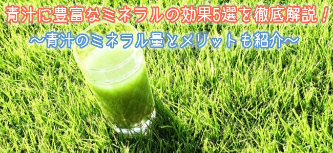 青汁に豊富なミネラルの効果5選を徹底解説!青汁のミネラル量とメリットも紹介