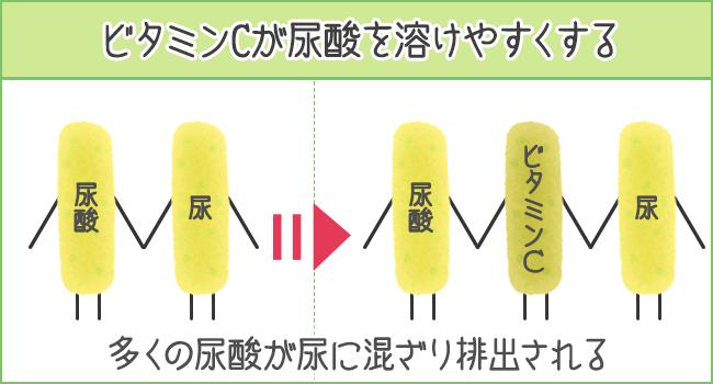 ビタミンCが尿酸を溶けやすくする