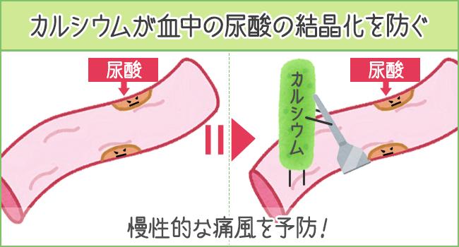 カルシウムが血中の尿酸の結晶化を防ぐ
