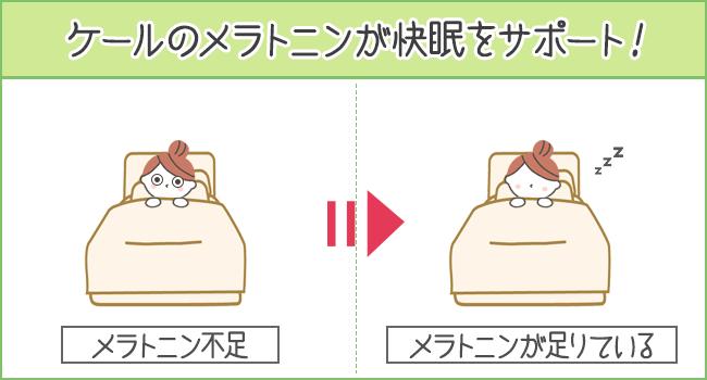 ケールのメラトニンが快眠をサポート