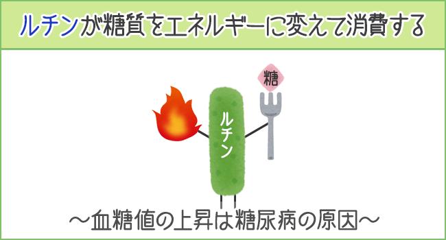 ルチンが糖質をエネルギーに変えて消費する